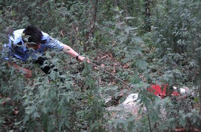 婴儿被装行李箱中遗弃树林数月成干尸(图)图片