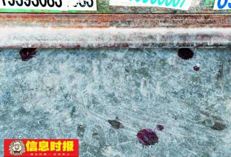 歹徒打砸店铺枪击围观者致8人受伤(图)