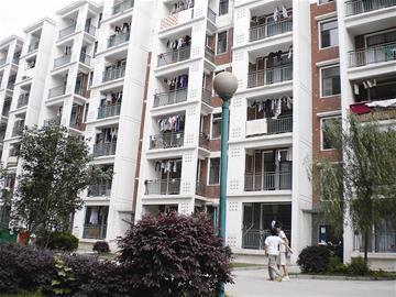 开发商出租7层违建楼规划城管两部门相互推责