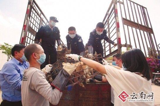 民警和网友把狗卸到派出所 刘筱庆 摄