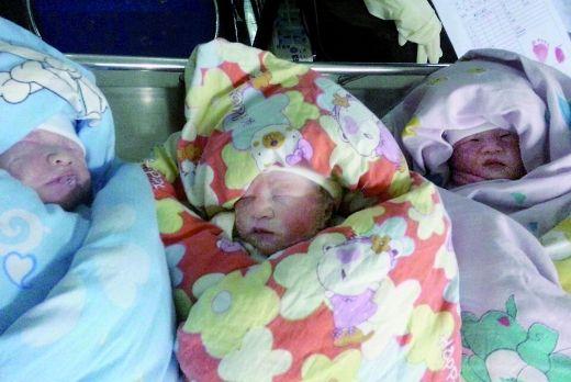 38岁女子生下三胞胎 无力生养欲给孩子找干妈