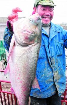 中华第一网首日捞上1万余公斤鱼(组图)
