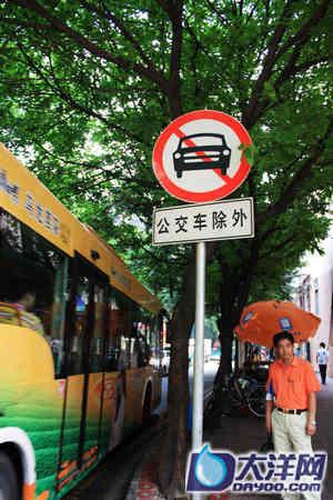 """在恒福路与淘金北路的交叉口,""""禁行,公交车除外""""的标志很醒目,但很多车辆依旧熟视无睹。"""