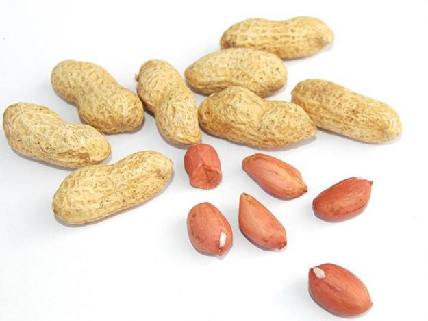 醋泡花生對健康大有益處|花生|胃潰瘍|高血壓