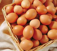 雞蛋最營養吃法排行!看看你吃對了嗎?|雞蛋|膽固醇|蛋白質