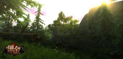 茂密的森林充满着生机