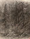 胡杨之三 173×130cm 1997年