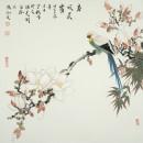 《春风晨露》68cmx68cm