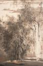 7杨耀宁-传统山水画