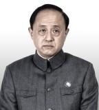 杨新鸣饰马临深