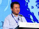 王健林:民营企业要准确定位自己