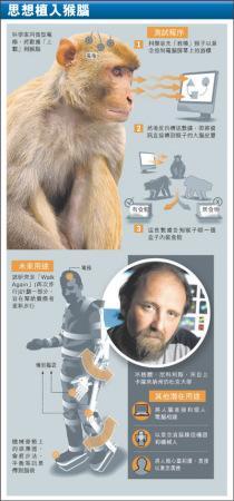 美国科学家首创将思想植入猴脑