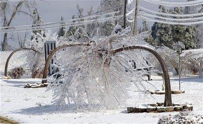 美国遭冰风暴袭击23人死亡逾90万户断电(组图)