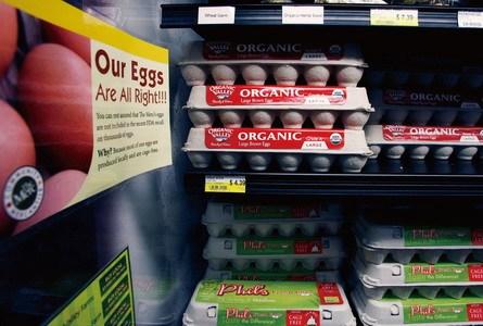 沙门氏菌引鸡蛋安全监管质疑美召回5.5亿枚蛋