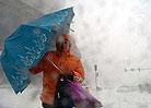 沈阳市民在风雪中艰难行走