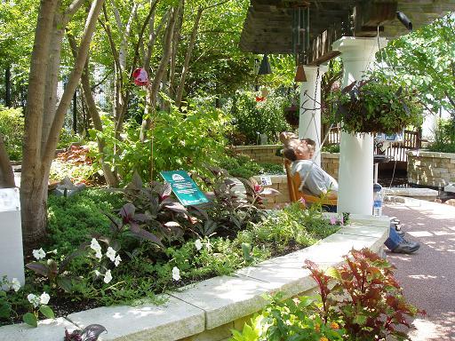 花园一角-1