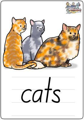 """英语学习卡片""""cats"""""""