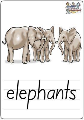 """英语学习卡片""""elephants"""""""