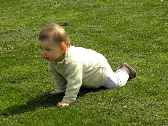 专家指导:你会让3岁宝宝学英语吗