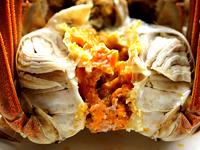 肉肥黄足美味清蒸螃蟹