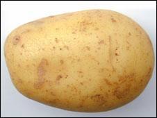 A raw potato