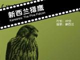 《新西兰猎鹰》