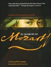 《寻找莫扎特》