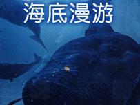 《海底漫游》