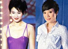 张可颐(1994年参选)