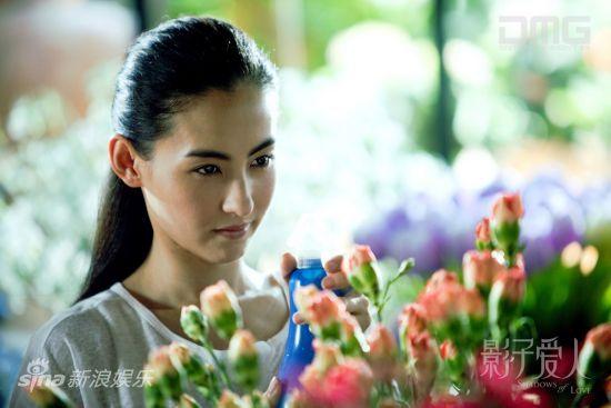 张柏芝清纯迷人