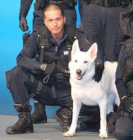 电影《dog×police》6月2日在东京的东宝工作室举行了完成报告会