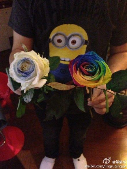 漂亮的七彩玫瑰