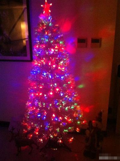 圣诞树甜蜜出炉