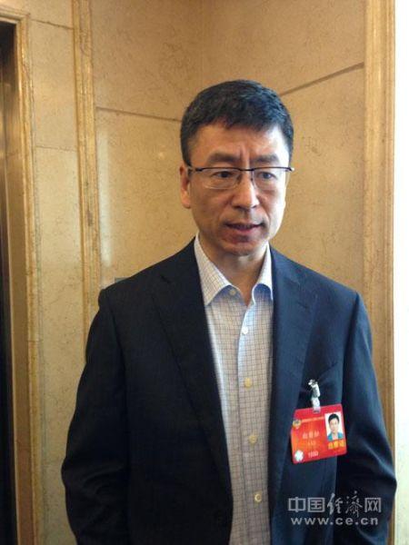 全国政协委员、中央电视台主持人白岩松中国经济网记者段丹峰摄