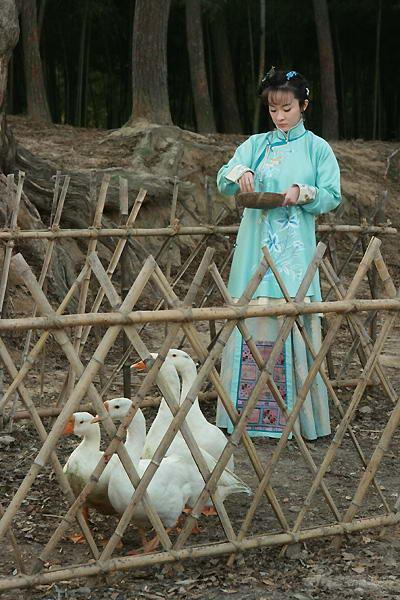 《玫瑰江湖》开播霍思燕钟汉良缠绵相拥取暖