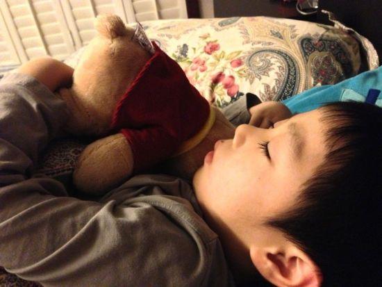 华少儿子抱毛熊可爱酣睡
