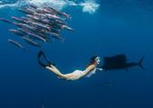 女人与大鱼