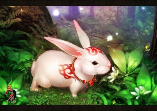 嫦娥简笔画 风景 小动物
