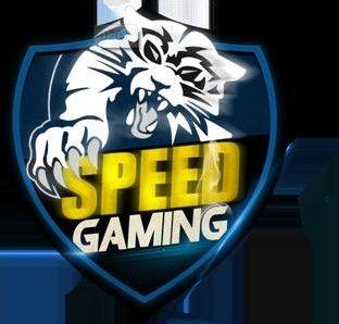 RSnake.int更名Speed