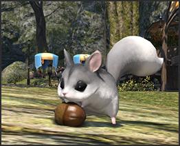 FF14活动:GM陪你玩 寻宝大探险 赢珍惜宠物