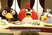 《愤怒的小鸟》真人恶搞短片
