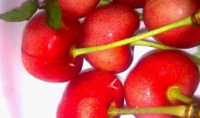 传说用盐水泡樱桃会出现白色小虫。