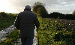 为什么爸妈年纪大了以后,开始变得容易迷路了?