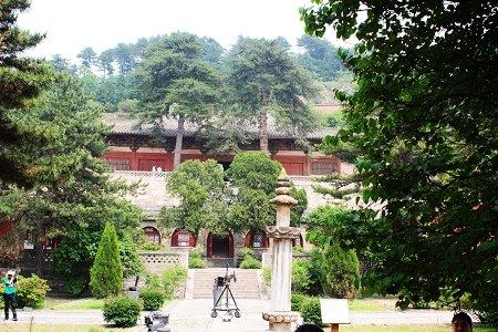 寺院内一双古松郁郁葱葱-6月6日 唐代建筑的翘楚 佛光寺