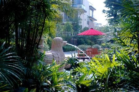 泰禾红树林景观