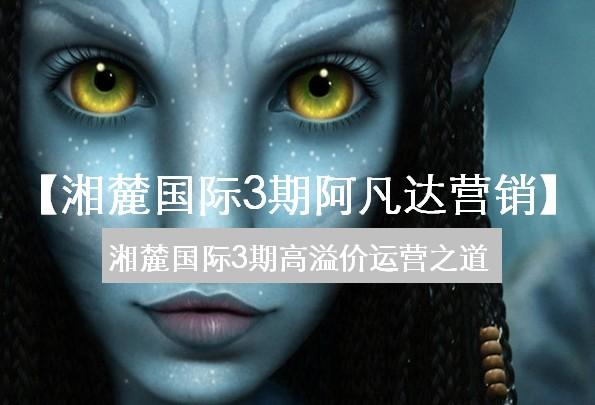 中原-2010年8月长沙湘麓国际3期阿凡达营销法则