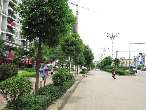 南宁市五象大道精品长廊一期8月完工图片