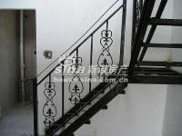 桃花岛 实景图 顶楼的铁艺楼梯