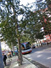 南北栋 实景图 公交车站