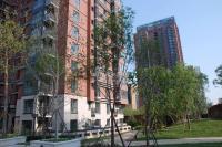 北京华侨城 实景图 社区